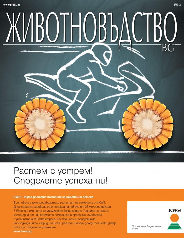 Animals BG 1, 2013, cover