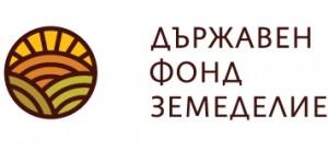 LogoDFZ dfz дфз