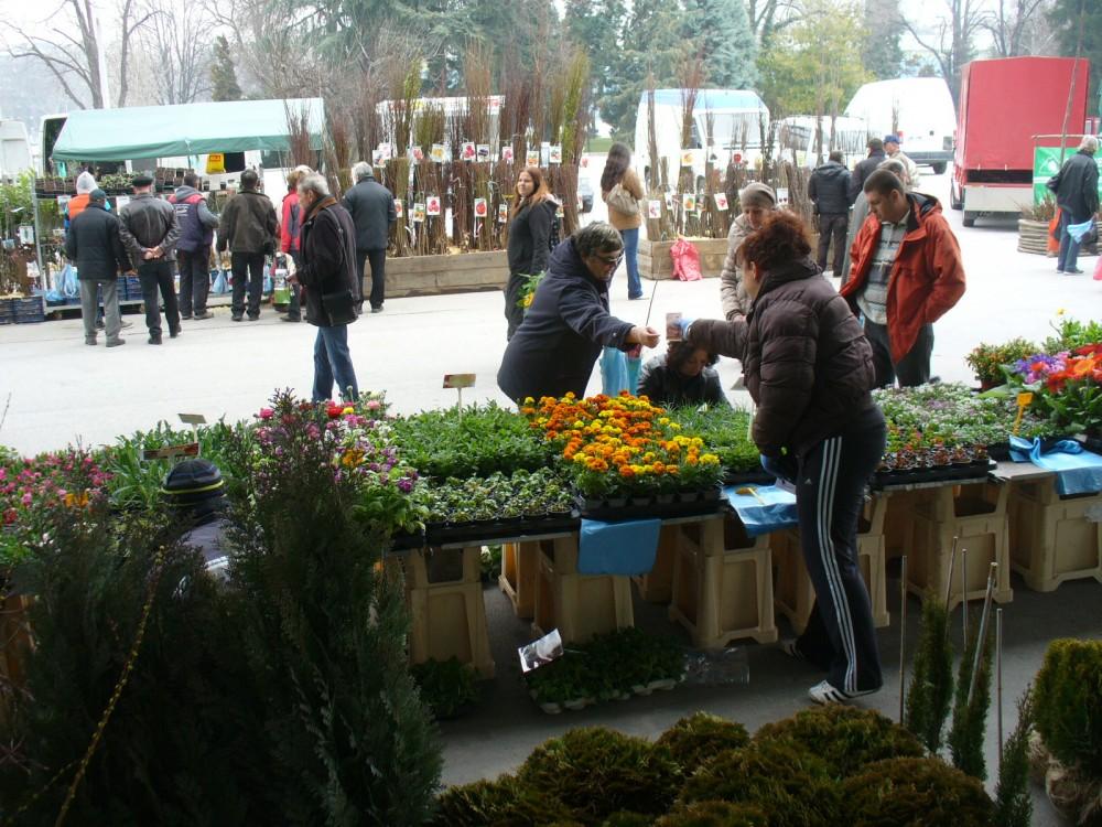 """Голямото разнообразие от цветя, декоративна растителност, овошки и оборудване за градинарството привличат хиляди посетители на Специализираната изложба """"Цветна пролет 2015""""  в Международен панаир Пловдив."""
