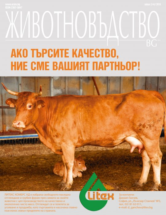 Animals BG 2016 3-4 web-1