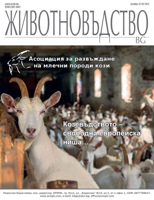 animals-bg-2016-9-10-web-1